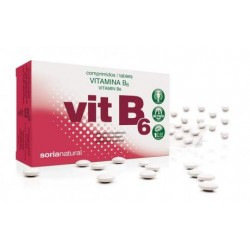 VITAMINA B6  Retard  200mg 48 compr